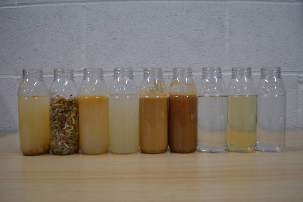 Effluent Samples Throughout Process