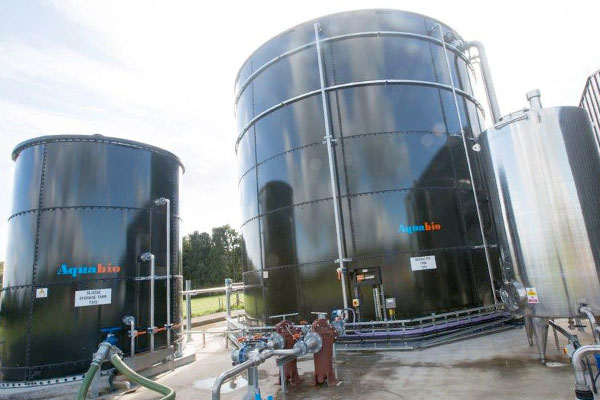 Radnor Hills Mineral Water Company CAT